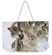 Timber Wolf Pictures 1314 Weekender Tote Bag