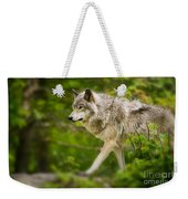 Timber Wolf Pictures 1329 Weekender Tote Bag