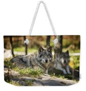 Timber Wolf Pictures 1363 Weekender Tote Bag