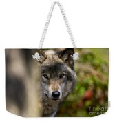 Timber Wolf Pictures 1365 Weekender Tote Bag