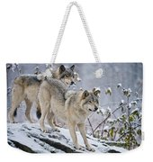 Timber Wolf Pictures 1417 Weekender Tote Bag