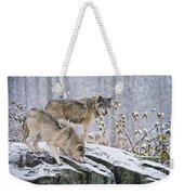 Timber Wolf Pictures 1420 Weekender Tote Bag