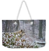 Timber Wolf Pictures 186 Weekender Tote Bag