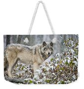 Timber Wolf Pictures 187 Weekender Tote Bag
