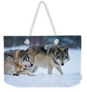 Timber Wolf Pictures 190 Weekender Tote Bag