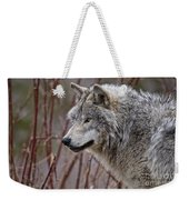 Timber Wolf Pictures 197 Weekender Tote Bag