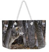 Timber Wolf Pictures 203 Weekender Tote Bag