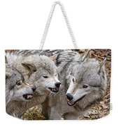 Timber Wolf Pictures 213 Weekender Tote Bag