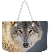 Timber Wolf Pictures 260 Weekender Tote Bag