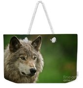 Timber Wolf Pictures 261 Weekender Tote Bag