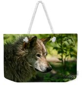 Timber Wolf Pictures 263 Weekender Tote Bag