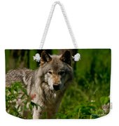 Timber Wolf Pictures 266 Weekender Tote Bag