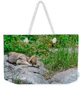 Timber Wolf Pictures 329 Weekender Tote Bag