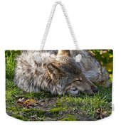Timber Wolf Pictures 42 Weekender Tote Bag