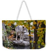 Timber Wolf Pictures 444 Weekender Tote Bag