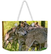 Timber Wolf Pictures 61 Weekender Tote Bag