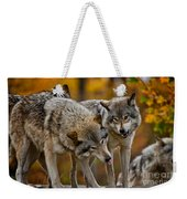 Timber Wolf Pictures 62 Weekender Tote Bag