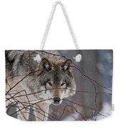 Timber Wolf Pictures 620 Weekender Tote Bag