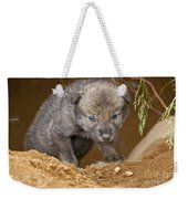 Timber Wolf Pictures 782 Weekender Tote Bag