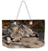 Timber Wolf Pictures 945 Weekender Tote Bag