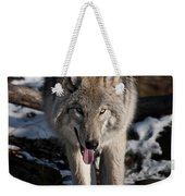 Timber Wolf Pictures 954 Weekender Tote Bag