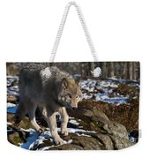 Timber Wolf Pictures 969 Weekender Tote Bag