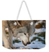 Timber Wolf Pictures 985 Weekender Tote Bag