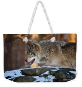 Timber Wolf Pictures 991 Weekender Tote Bag