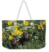 Timber Wolf Pups And Flowers North Weekender Tote Bag
