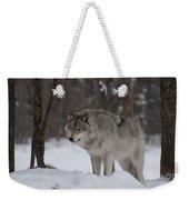 Timberwolf Series 4 Weekender Tote Bag