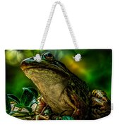 Time Spent With The Frog Weekender Tote Bag