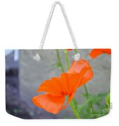 Time To Fly Weekender Tote Bag