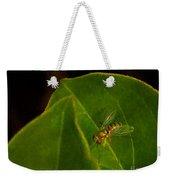 Tiny Fly Weekender Tote Bag