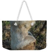 Tip Toeing Through The Fields. Weekender Tote Bag