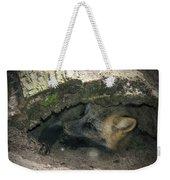 Tired Fox Weekender Tote Bag
