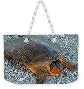 Tired Turtle Weekender Tote Bag