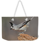 Titmouse Preparing For Takeoff Weekender Tote Bag