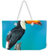 Toco Toucan Perched Weekender Tote Bag