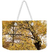 Tombs Under Oaktree Weekender Tote Bag