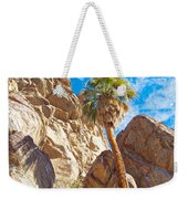 Top Of A Palm Near Top Of Andreas Canyon-ca Weekender Tote Bag