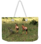 Topi Lookout On The Masai Mara Weekender Tote Bag