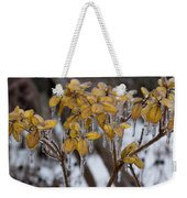 Toronto Ice Storm 2013 - My Garden In The Morning Weekender Tote Bag