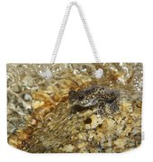 Torrent Treefrog Aka Waterfall Frog Weekender Tote Bag