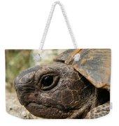 Tortoise Portrait In Macro Weekender Tote Bag