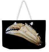 Toucan Crab Claw Weekender Tote Bag