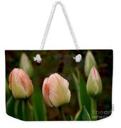Touch Of Peach Weekender Tote Bag