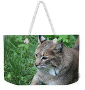 Tough Cat Weekender Tote Bag
