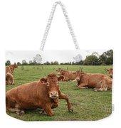 Tough Cows Weekender Tote Bag