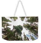 Towering Pine Trees Weekender Tote Bag