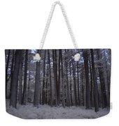 Towering Trees Over Ferns In Blue Weekender Tote Bag